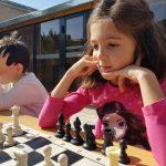 Հեռավար-ընտանեկան շախմատ․Ներկայացնում են ընտանեկան դպրոցները